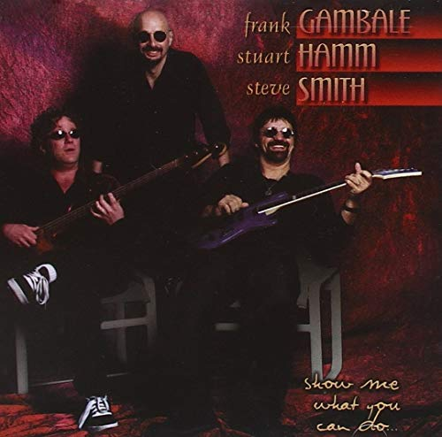 Gambale , Frank & Hamm , Stuart & Smith , Steve - Show Me What You Can