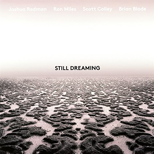 - Still Dreaming [Vinyl LP]