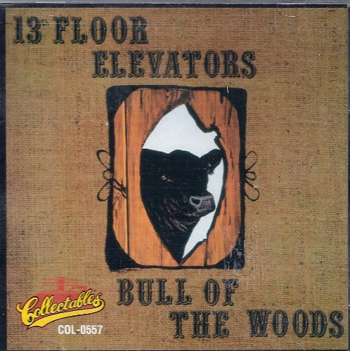 13th Floor Elevators , The - Bull of the Woods