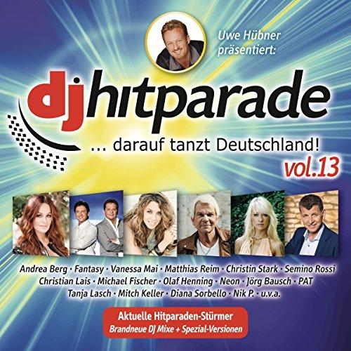 Sampler - DJ Hitparade 13