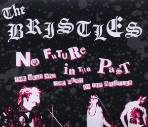 Bristles - No Future in the Past