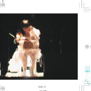 Björk - Vespertine - live