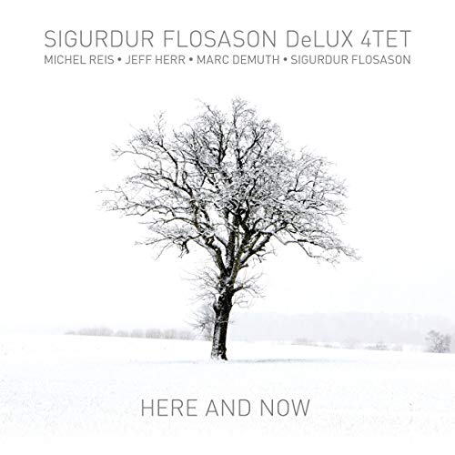 Sigurdur Flosason Delux 4tet - Here and Now