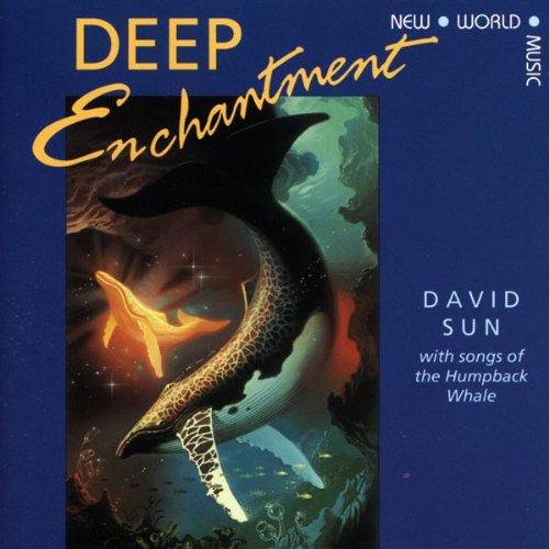 Sun , David - Deep Enchantment