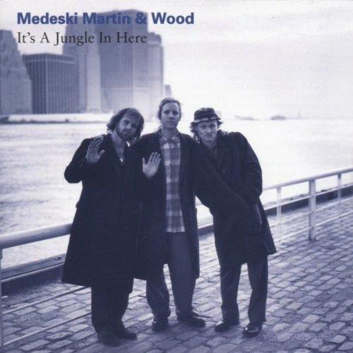 Medeski  Martin & Wood - It's a jungle in here