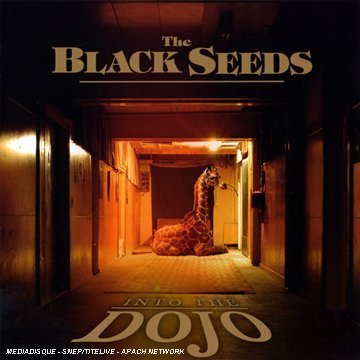 Black Seeds , The - Into the dojo