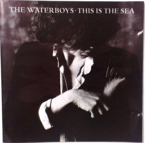 Waterboys , The - This Is The Sea