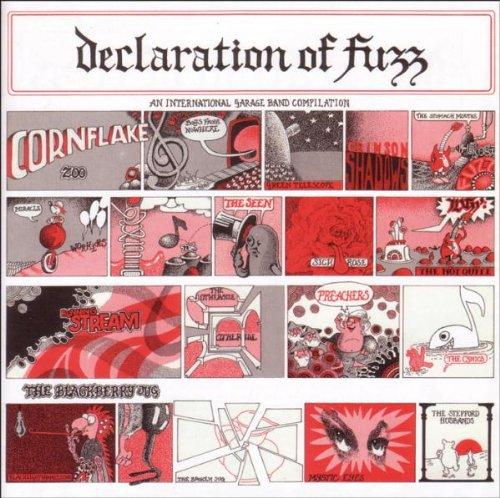 Sampler - Declaration of Fuzz