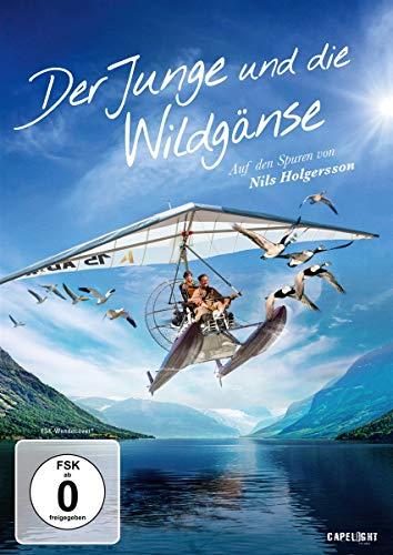 DVD - Der Junge und die Wildgänse