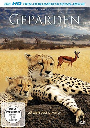 DVD - Geparden-Jäger am Limit