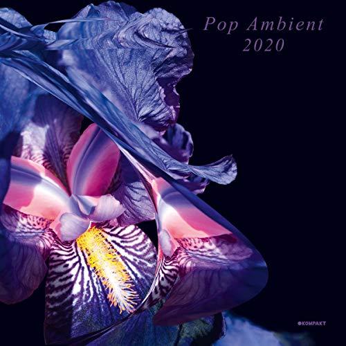 Sampler - Pop Ambient 2020