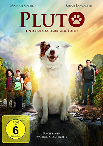 DVD - Pluto - Ein Schutzengel auf Pfoten