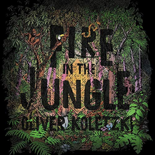 Koletzki , Oliver - Fire In The Jungle