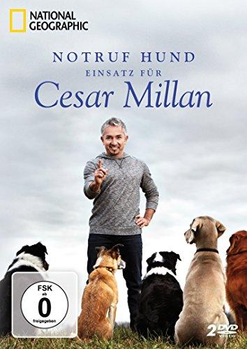 DVD - National Geographic: Notruf Hund - Einsatz für Cesar Millan [2 DVDs]