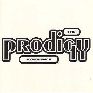 the Prodigy - Experience [Vinyl LP]