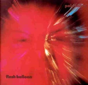 Pale Saints - Flesh Balloon