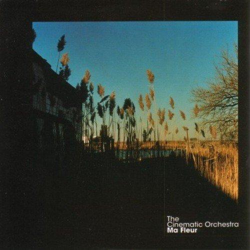 Cinematic Orchestra , The - Ma Fleur (Vinyl)