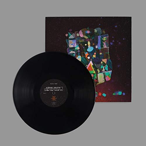 Little Dragon - New Me, Same Us (Vinyl)