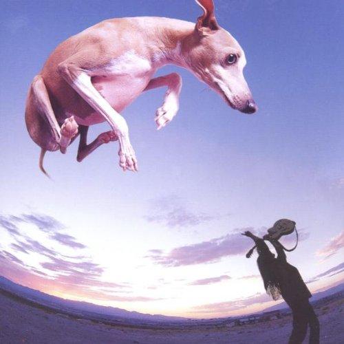 Gilbert , Paul - Flying Dog