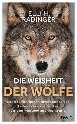Radinger, Elli H. - Die Weisheit der Wölfe: Wie sie denken, planen, füreinander sorgen. Erstaunliches über das Tier, das dem Menschen am ähnlichsten ist
